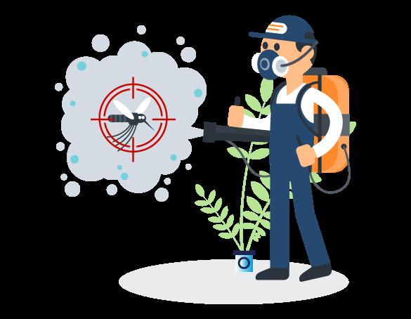 Professional Pest Control Victoria Point