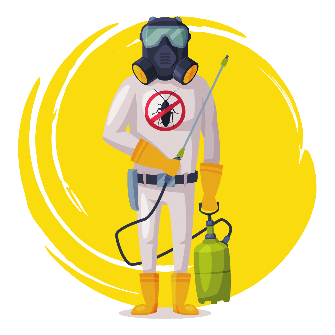 End Of Lease Pest Control Victoria Point