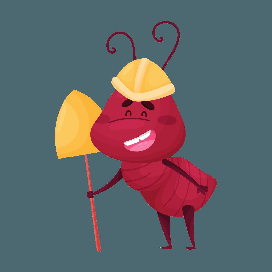 Termite Control Victoria Point